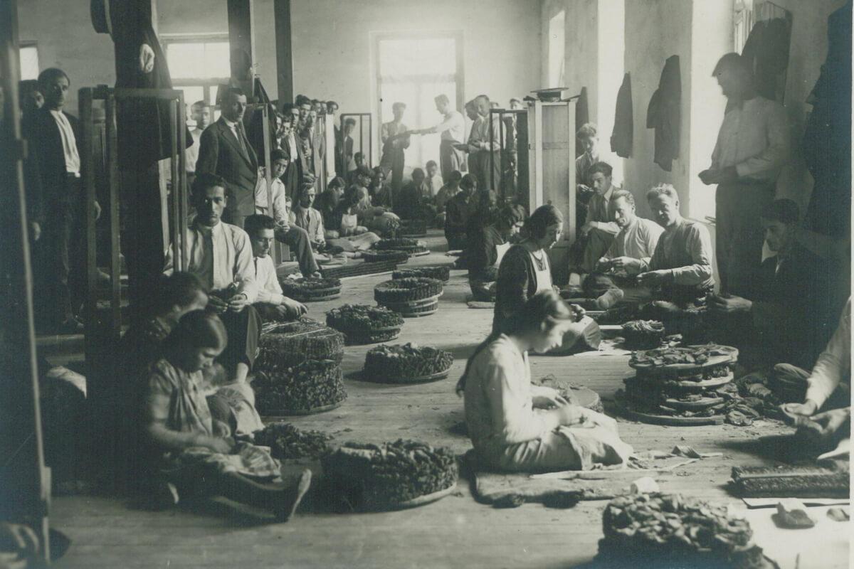 Επεξεργασία καπνού στις καπναποθήκες - φωτογραφία αρχείο Μουσείου Καπνού Καβάλας