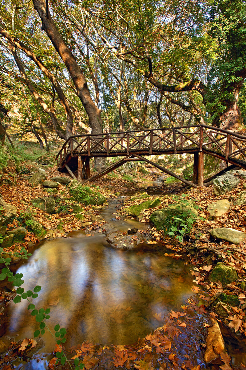 Περιβαλλοντικό μονοπάτι Παλιάς Καβάλας - Φωτογραφία Ηρακλής Μήλας